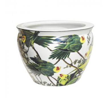 Cachepot em Cerâmica Papagaios 18 cm x 26 cm x 26 cm