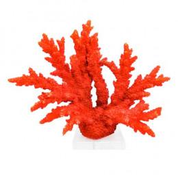 Coral Decorativo Vermelho com Base Translúcida - 27x34x10cm