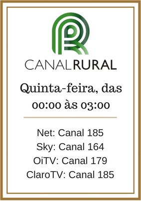 Mini Banner Canal Rural